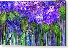 Acrylic Print featuring the mixed media Hydrangea Bloomies 3 - Purple by Carol Cavalaris