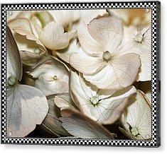 Hydrangea Blossom 2 Framed Acrylic Print