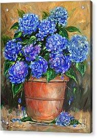 Hydrangeas In Pot Acrylic Print