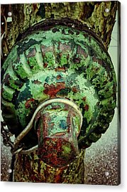 Acrylic Print featuring the photograph Hydrant 255 by Olivier Calas