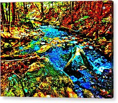 Hyper Childs Brook Z 5 Acrylic Print