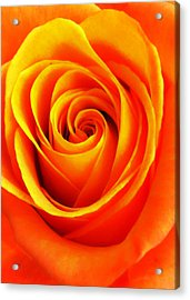 Hypnotic Orange Acrylic Print