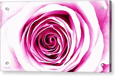 Hypnotic Pink Acrylic Print