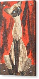 I Am A Siamese If You Please Acrylic Print by Marsha Elliott