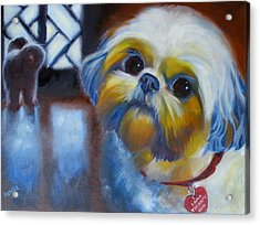 I Am A Therapy Dog Acrylic Print by Kaytee Esser