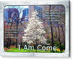 I Am Come Acrylic Print