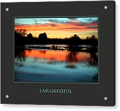 I Am Grateful Acrylic Print by Donna Corless