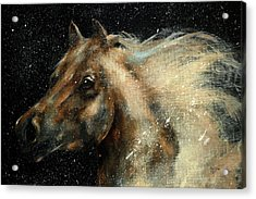 I Am In The Stars And In Your Heart Acrylic Print by Barbie Batson