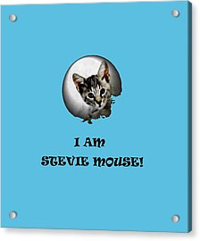 I Am Stevie Mouse Acrylic Print