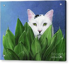 I Can See You, But... Acrylic Print by Peggy Dreher