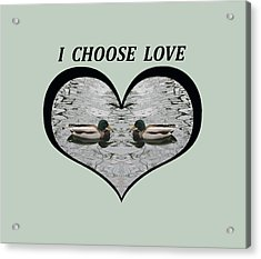 I Choose Love With A Pair Of  Mallard Ducks Framed In A Heart Acrylic Print