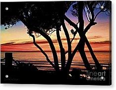 I Desire Mercy Acrylic Print