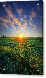 I Don't Live To Be Acrylic Print by Phil Koch