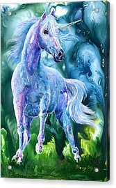 I Dream Of Unicorns Acrylic Print