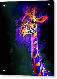I Dreamt A Giraffe Acrylic Print