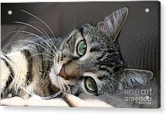 I Get Lost In Your Eyes Acrylic Print by Heather King