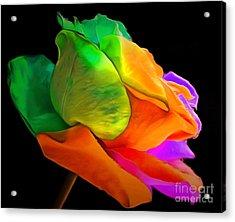 I Give You My Love Acrylic Print