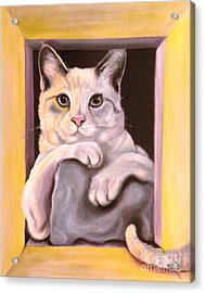 I Have Been Framed Acrylic Print by Susan A Becker