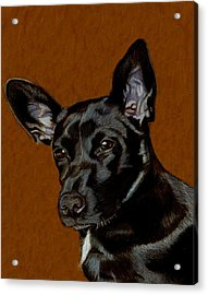 I Hear Ya - Dog Painting Acrylic Print