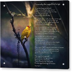 I Know Why The Caged Bird Sings By Maya Angelou Acrylic Print