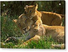 I Love My Mother Acrylic Print by Johan Elzenga