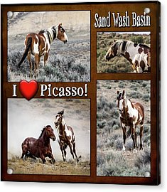 I Love Picasso Collage Acrylic Print