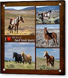 I Love Wild Horses Of Sand Wash Basin Acrylic Print