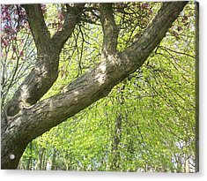 Acrylic Print featuring the painting I Love You Tree by Judith Desrosiers