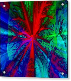I Promised You Colors Acrylic Print by Fania Simon