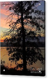 I Saw Her Standing There - Silhouette Of A Dream  Acrylic Print