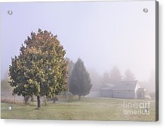 I Scent The Morning Air Acrylic Print by Evelina Kremsdorf