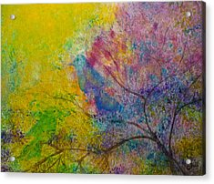 I See Birds Acrylic Print by Claire Bull