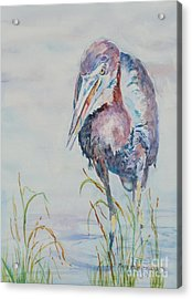Acrylic Print featuring the painting I See Lunch by Mary Haley-Rocks