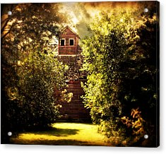 Acrylic Print featuring the photograph I See You by Julie Hamilton