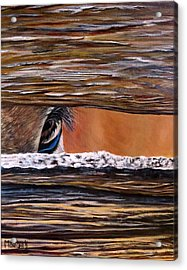 I See You Acrylic Print by Marilyn McNish