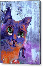 I See You Cat Acrylic Print