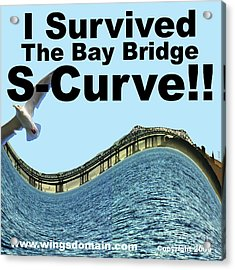 I Survived The Bay Bridge S.curve Acrylic Print by Wingsdomain Art and Photography