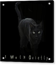 I Walk Quietly Acrylic Print