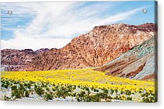 I Want To Be There Acrylic Print