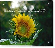 I Will Lift Up Mine Eyes Acrylic Print