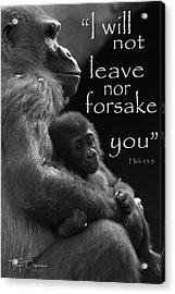 I Will Not Leave Nor Forsake You Acrylic Print