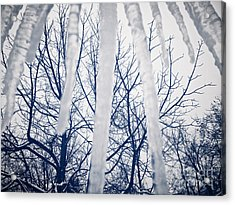 Ice Bars Acrylic Print