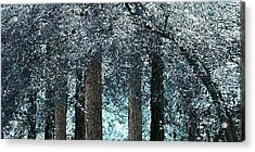 Ice Blue Arch Acrylic Print