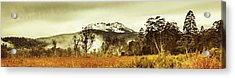 Ice Covered Mountain Panorama In Tasmania Acrylic Print by Jorgo Photography - Wall Art Gallery