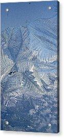 Ice Crystals Acrylic Print