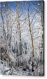 Ice Curtain Acrylic Print