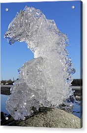 Acrylic Print featuring the photograph Ice Dragon by Sami Tiainen