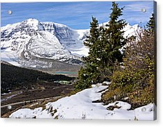 Acrylic Print featuring the photograph Ice Fields by John Gilbert