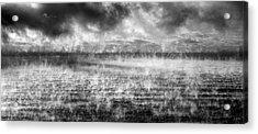 Ice Fog  Acrylic Print