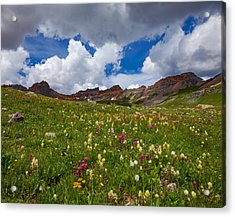 Ice Lake Meadow Acrylic Print by Darren White